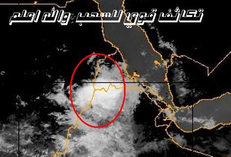 المتابعة اليومية للطقس في العالم العربي من 16 / 8 / وحتى 19 / 8 / 2009 م - صفحة 5 25088_01250590893